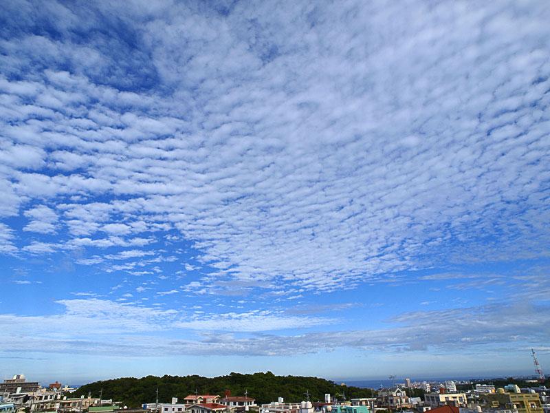 080924_05uroko_mihama.jpg