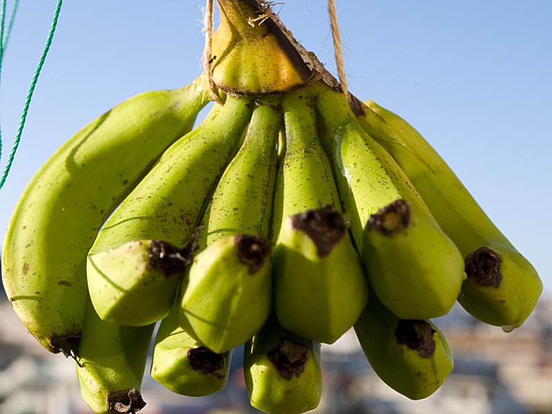 banana070913.jpg