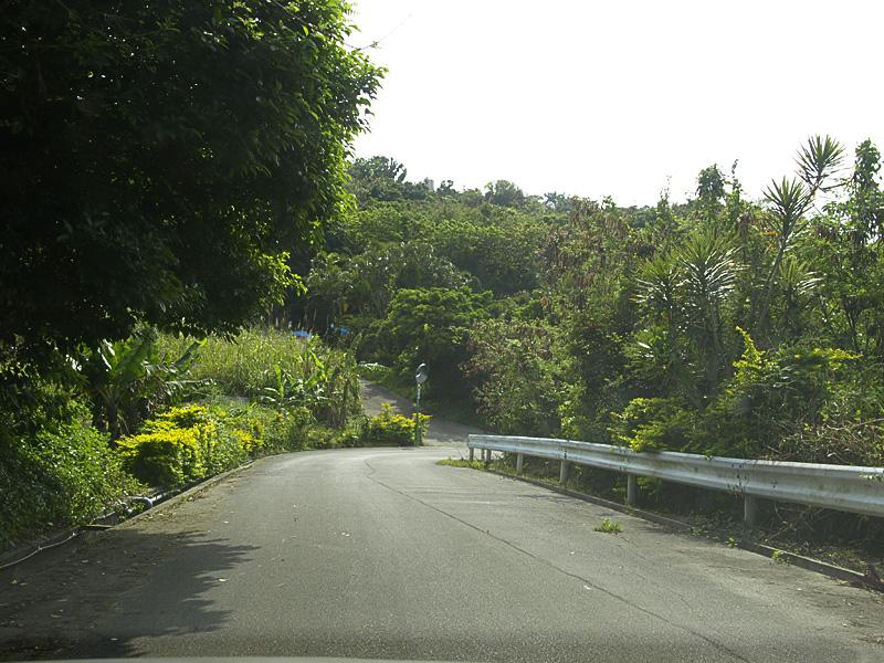 road_kitanaka.jpg