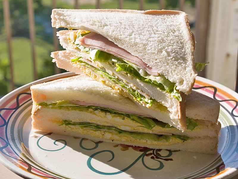 sandwich070905.jpg