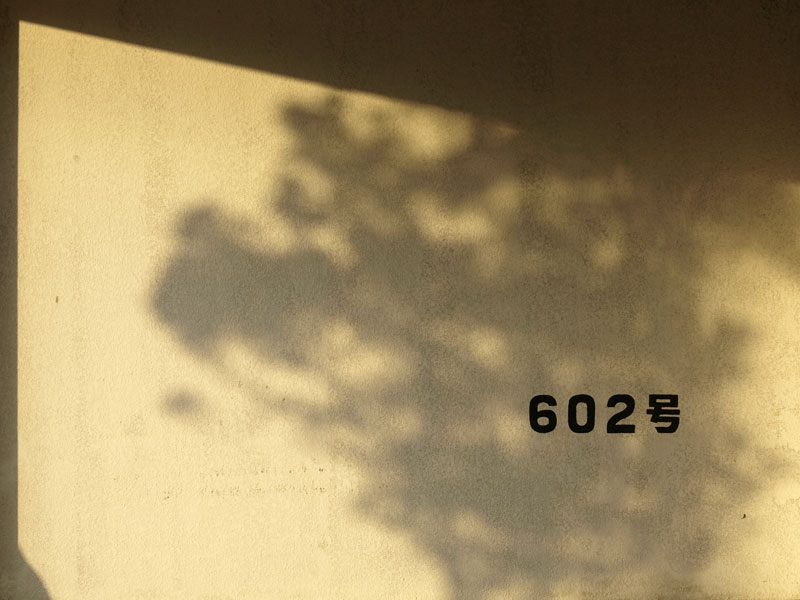 shadow_parking602.jpg